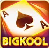 Bigkool 2019 icon