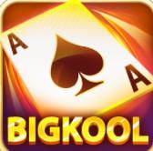 Bigkool 2019 icon